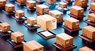 Trazabilidad Certificada en la cadena productiva